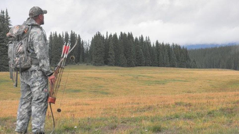 Colorado Public Land Elk Hunting Diary