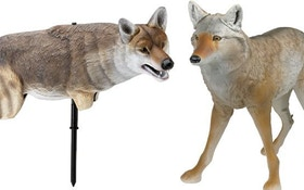 Predator Hunting Coyote Decoy Roundup