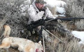 Predator Hunting with a Shotgun