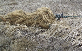 Hunt Coyotes Like A Deer Hunter