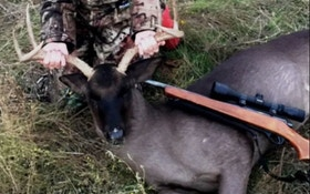 Texas Teen Bags Black Whitetail Buck