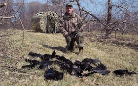 How Crow Hunting Helps