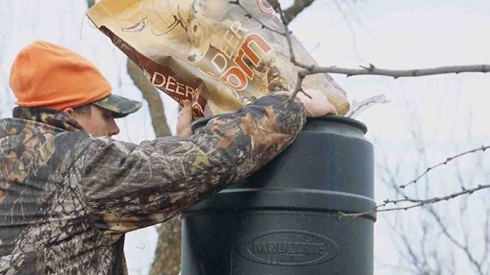 Should You Use Bait As A Deer Management Tool?