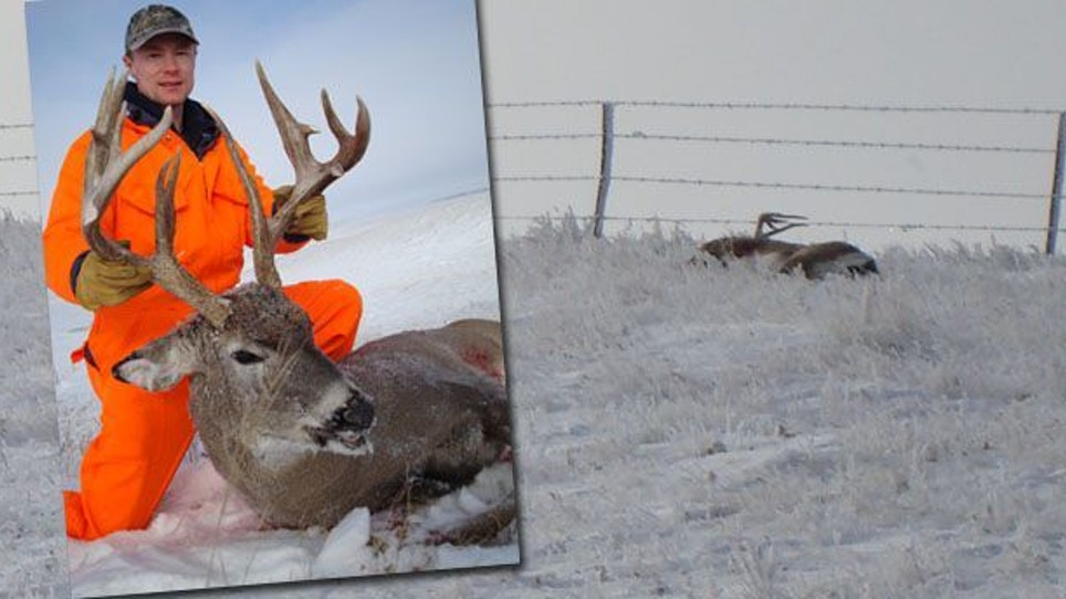 How I Missed My Dream Buck — Three Times