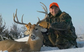 Hunting cold-weather whitetail bucks