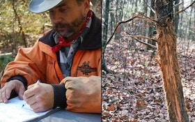 Before You Hunt: Essential Scouting Tips