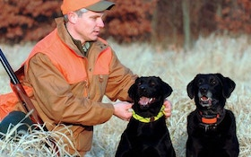 New Hunting Dog Products for 2011
