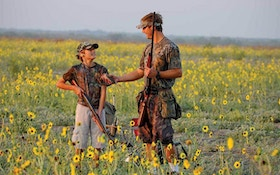 Q&A: Last-minute dove field preparation
