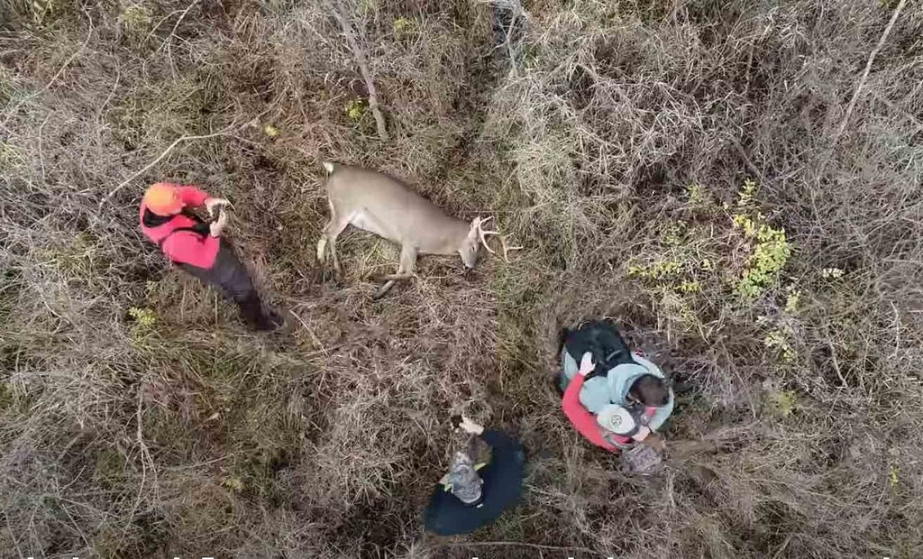 Video: Bowhunters Use Drone — Legally — to Recover Giant Buck