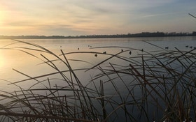 A Story of Survival: Duck Hunter Remembers the Day He Almost Died
