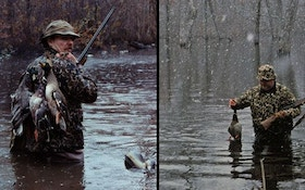 How Weather Affects Waterfowl