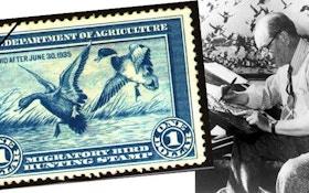 Duck-Stamp Trivia