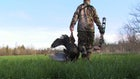 Wild Turkey Tip: Scout for Evening-Only Ambushes