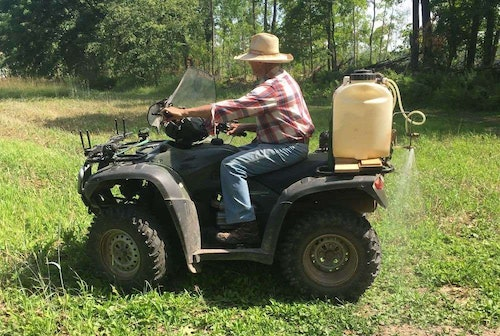 Shown here is the author's dad killing weeds on an old food plot. He sprayed in mid-July and will plant brassicas in early August.