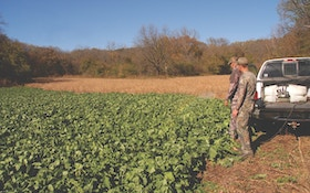 How to Avoid Food-Plot Disasters