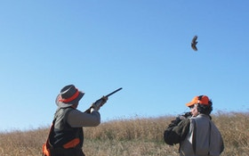 Shooting The First Bird First Leads To More Birds