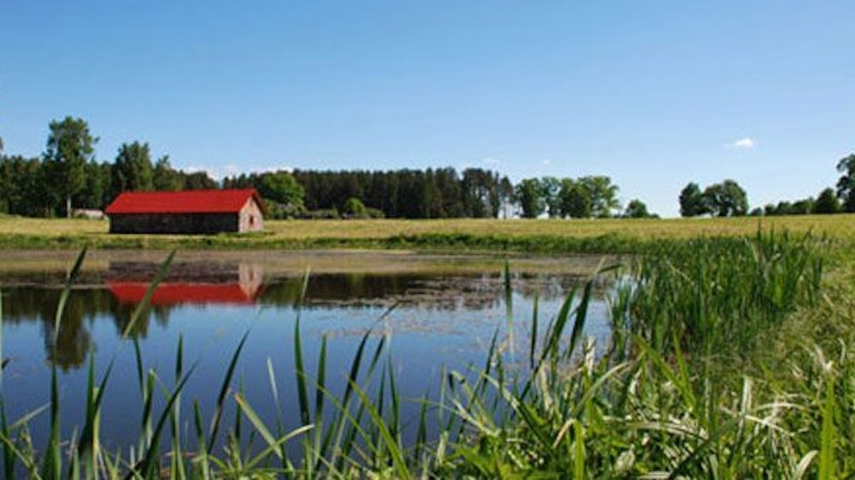 Proper pond management benefits fish and anglers
