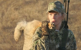 Coyote hunting for sport can be a money maker too