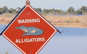 Alligator Kills 28-Year-Old Texas Man During Late-Night Swim