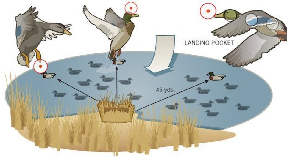 Off-Season Practice: The Seven Hardest Waterfowl Shots To Make