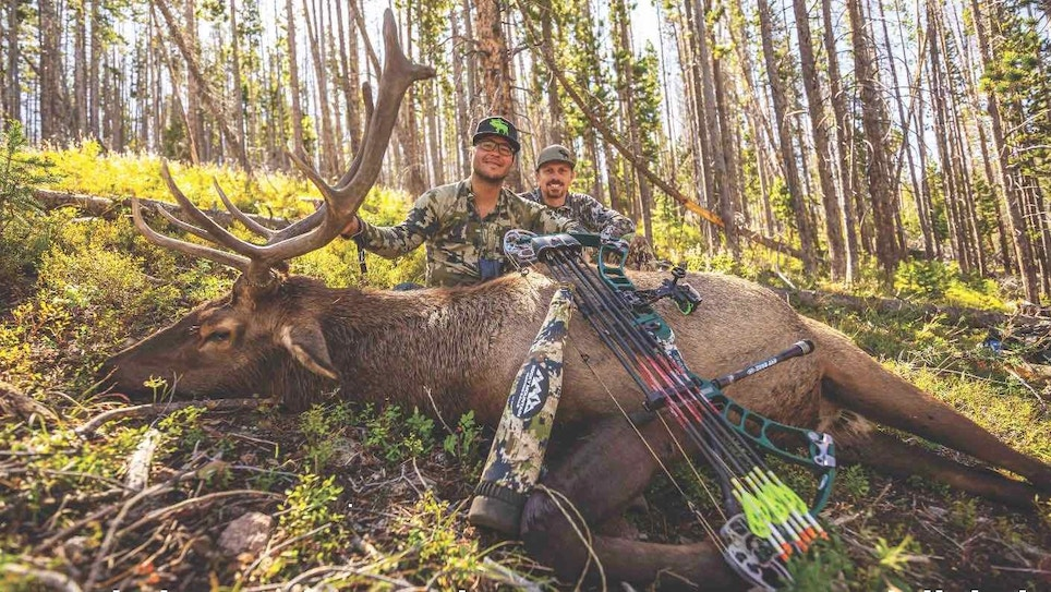 Bowhunting Elk on Public Ground — Have Heart
