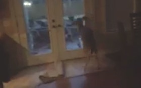 Deer Crashes Through Window Of Arkansas Home