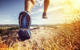The Long-Distance-Running Debate