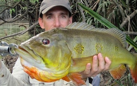 IGFA Hot Catches for April 2010