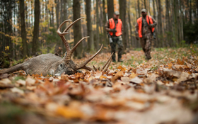 10 Solutions for Rut-Hunting Problems