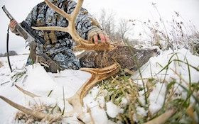 Top 10 late-season whitetail tactics