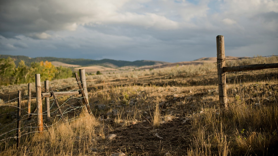 Everything You Need To Know About Bowhunting The West In 2017