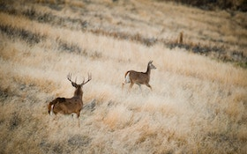 Making the Second Rut Work — Part 1