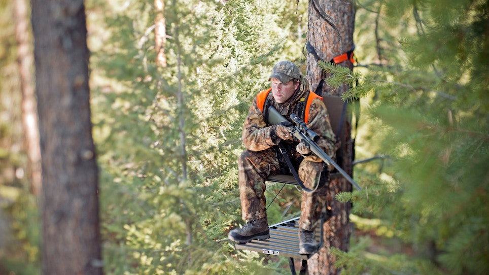 Does Passing Gas on the Treestand Scare the Deer Away?