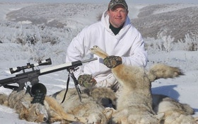 The good, the bad, and the ugly about coyote calling contests