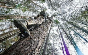 3 Bow Hauling Tips: The Loop System