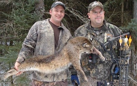 Michigan Bobcat Hunting Update: Toby Scores!