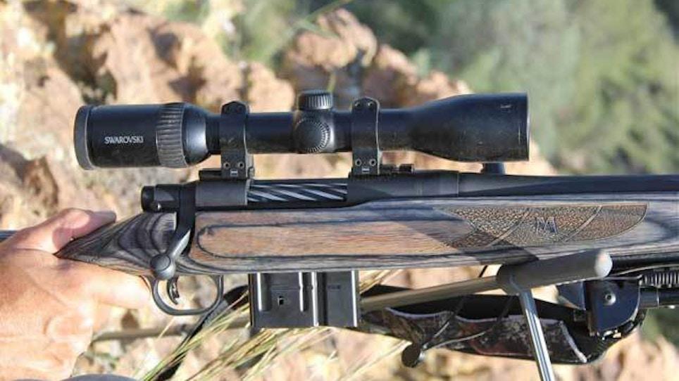 Bear gear: Mossberg MVP Predator .308