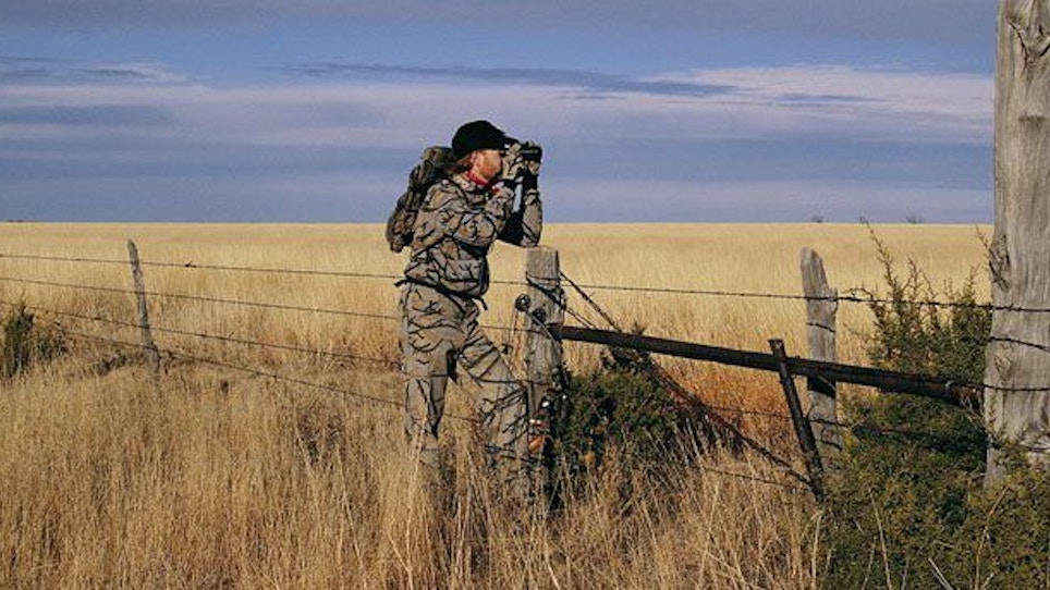 Mule Deer Are Different—Part 2