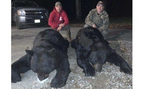 Black Bear World Record Certified by Pope and Young Club