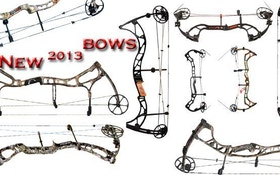 New Bows for 2013