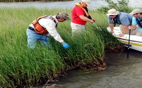 Deepwater Horizon Natural Resources Trustees Annouce Gulf Restoration Progress