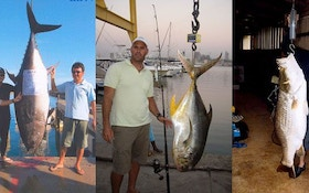 IGFA Hot Catches November 2010