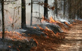 Using controlled fires for conservation