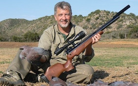 Pigeon Hunting With An Airgun