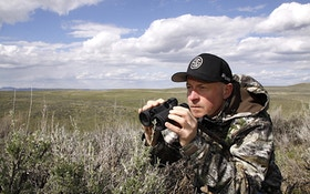 Secret Tip for Hunting Predators