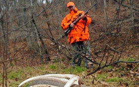 How far do fleeing deer run?