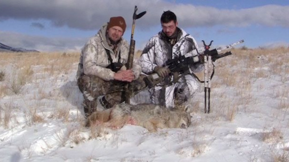 Using An AR For Coyote Hunting