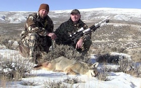 Late Season Coyote Calling Strategies