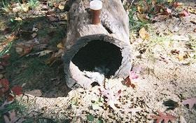 Develop Rabbit Habitat For More Predators
