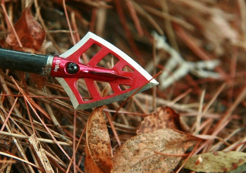 Cut-on-contact broadheads such as the DirtNap Gear D.R.T. provide maximum penetration.